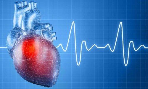 сердце при аритмии