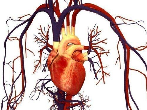 симптомы метаболической кардиомиопатии